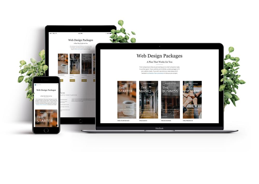 tc out loud web design packages